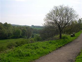 A view from the Biddulph Valley Way