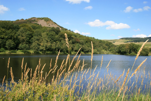 Tegg's Nose Country Park
