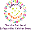 The Local safeguarding children's board