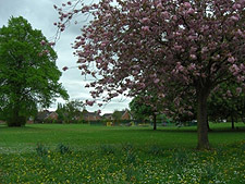 Brookfield Park in Nantwich